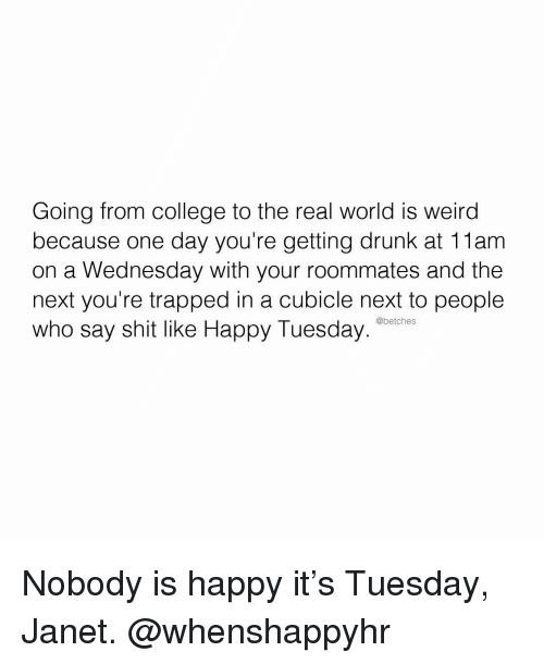 College, Drunk, and Shit: Going from college to the real world is weird  because one day you're getting drunk at 11am  on a Wednesday with your roommates and the  next you're trapped in a cubicle next to people  who say shit like Happy Tuesday  @betches Nobody is happy it's Tuesday, Janet. @whenshappyhr