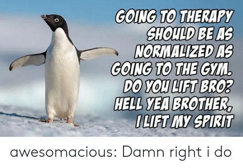 Gym: GOING TO THERAPY  SHOULD BE AS  NORMALIZED AS  GOING TO THE GYM  DO YOU LIFT BRO3  HELL YEA BROTHER,  OLIFT MY SPIRIT awesomacious:  Damn right i do