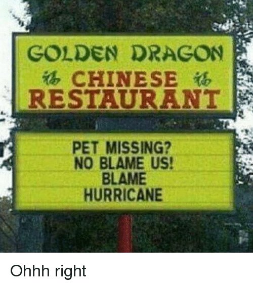 chinese restaurant: GOLDEN DRAGON  CHINESE  RESTAURANT  PET MISSING?  NO BLAME US!  BLAME  HURRICANE Ohhh right