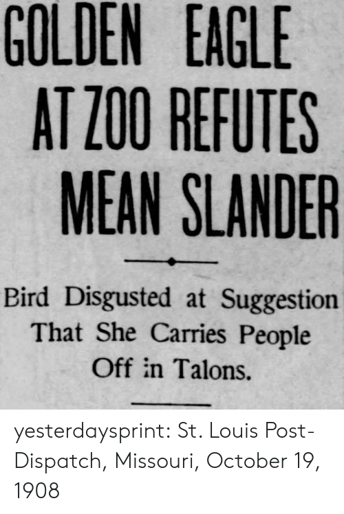 Target, Tumblr, and Blog: GOLDEN  EAGLE  AT Z00 REFUTES  MEAN SLANDER  Bird Disgusted at Suggestion  That She Carries People  Off in Talons. yesterdaysprint:  St. Louis Post-Dispatch, Missouri, October 19, 1908