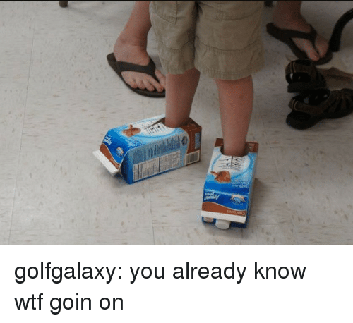 Target, Tumblr, and Wtf: golfgalaxy: you already know wtf goin on