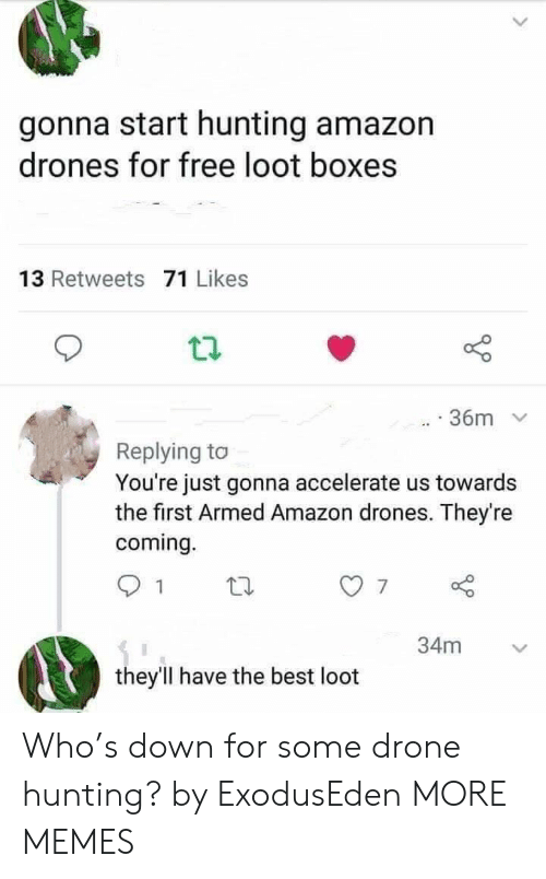 Drone: gonna start hunting amazon  drones for free loot boxes  13 Retweets 71 Likes  36m  Replying to  You're just gonna accelerate us towards  the first Armed Amazon drones. They're  coming.  34m  they'll have the best loot Who's down for some drone hunting? by ExodusEden MORE MEMES