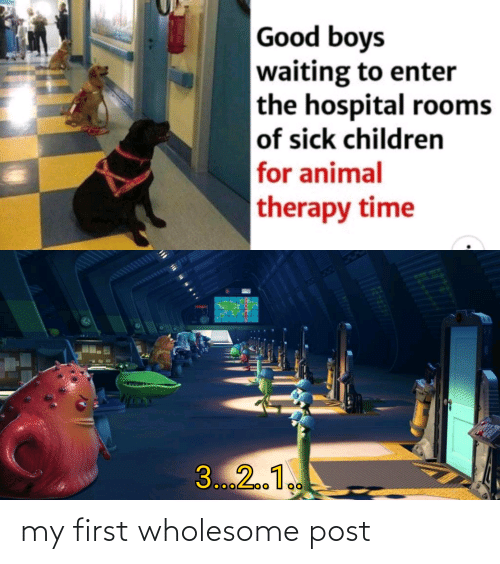 Sick: Good boys  waiting to enter  the hospital rooms  of sick children  for animal  therapy time  3...2.1. my first wholesome post