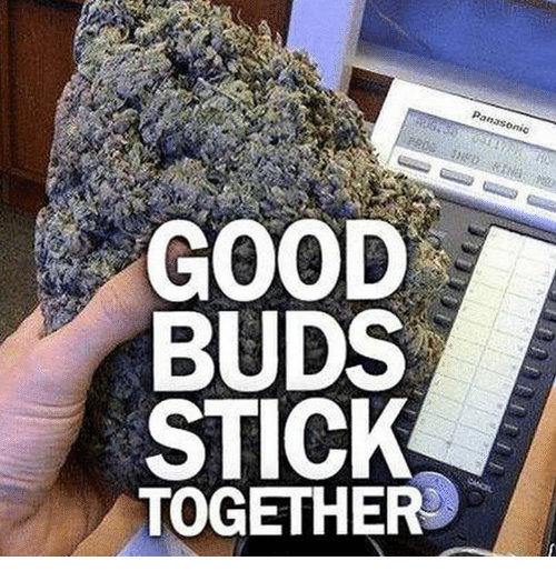 Memes, Good, and 🤖: GOOD  BUDS  STICK  TOGETHER
