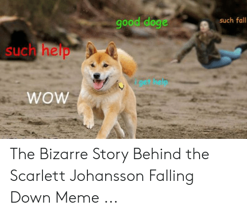 Fall Meme: good doge  such fall  such help  wow The Bizarre Story Behind the Scarlett Johansson Falling Down Meme ...