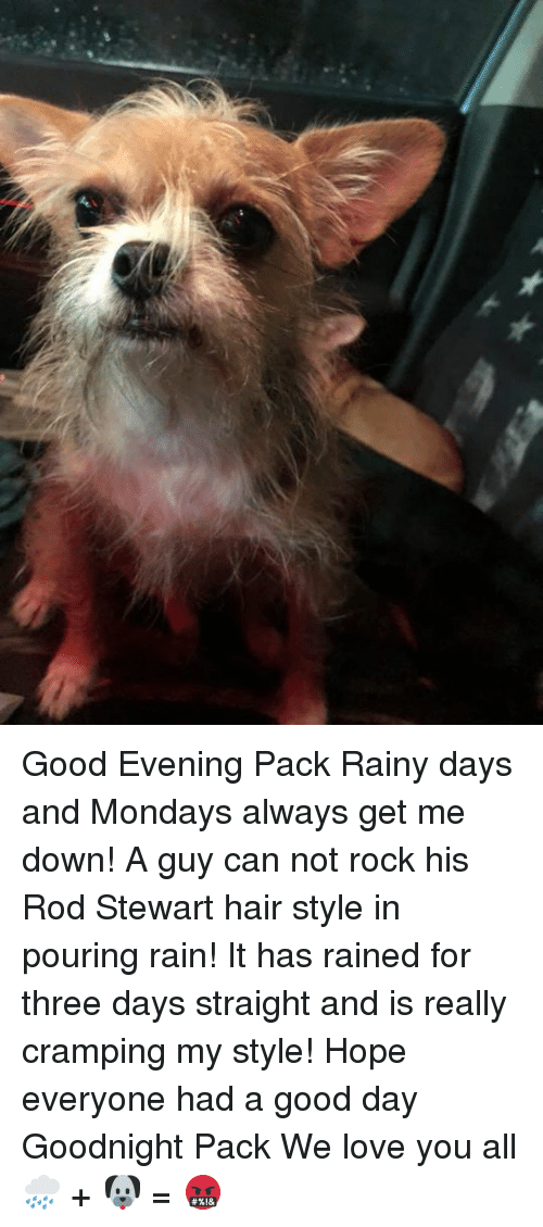 Good evening pack rainy days and mondays always get me down a guy love memes and mondays good evening pack rainy days and mondays always get altavistaventures Images