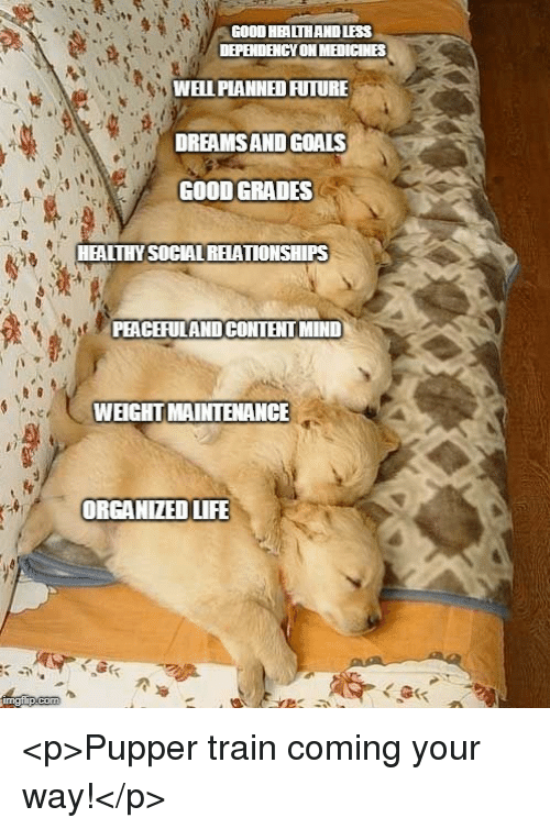 Future, Goals, and Life: GOOD HEALTHAND LESS  WEIPIANNED FUTURE  DREAMSAND GOALS  GOOD GRADES  HEALTHY SOCIAL REATIONSHIPS  PEACEFULAND CONTENT MIND  WEIGHTMAINTENANCE  ORGANIZED LIFE <p>Pupper train coming your way!</p>