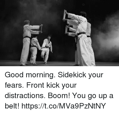 Distractions: Good morning. Sidekick your fears. Front kick your distractions. Boom! You go up a belt! https://t.co/MVa9PzNtNY