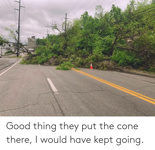 Kept: Good thing they put the cone there, I would have kept going.