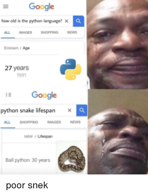 Eminem, Google, and News: Google  how old is the python larguage? x  ALL  IMAGESSHOPPING  NEWS  Eminem s Age  27 years  1991  Google  python snake lifespan × a  ALL SHOPPING IMAGES NEWS  M&M/Lifespan  Ball python 30 years poor snek