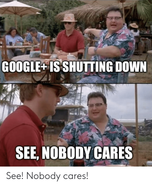 see nobody cares: GOOGLE ISSHUTTING DOWN  SEE, NOBODY CARES See! Nobody cares!