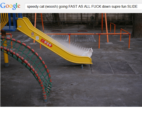 Going Fast: Google  speedy cat (woosh) going FAST AS ALL FUCK down supre fun SLIDE