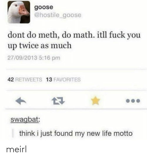 My New: goose  @hostile_goose  dont do meth, do math. itll fuck you  up twice as much  27/09/2013 5:16 pm  42 RETWEETS 13 FAVORITES  swagbat:  think i just found my new life motto meirl
