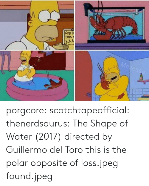 toro: Gop B  THIS porgcore: scotchtapeofficial:  thenerdsaurus: The Shape of Water (2017) directed by Guillermo del Toro   this is the polar opposite of loss.jpeg   found.jpeg
