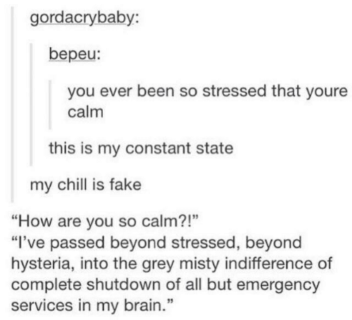 "Chill, Fake, and Funny: gordacrybaby:  bepeu:  you ever been so stressed that youre  calm  this is my constant state  my chill is fake  ""How are you so calm?!""  ""I've passed beyond stressed, beyond  hysteria, into the grey misty indifference of  complete shutdown of all but emergency  services in my brain.""  1"