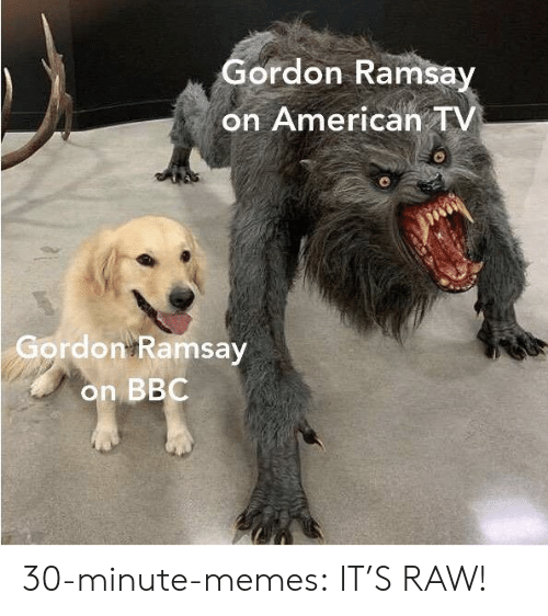 Gordon Ramsay, Memes, and Tumblr: Gordon Ramsay  on American TV  Gordon Ramsay  on BBC 30-minute-memes:  IT'S RAW!