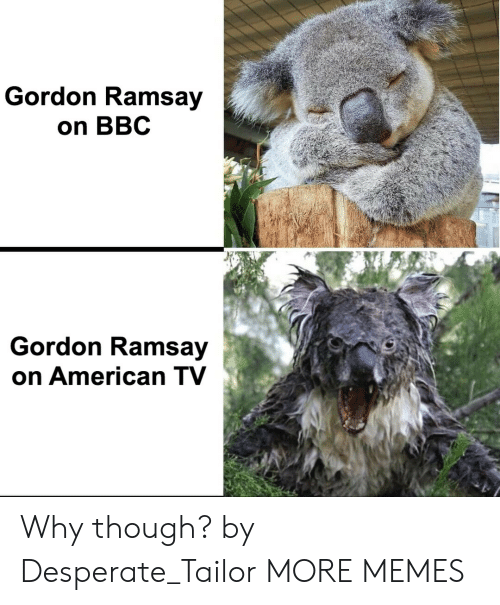 Ramsay: Gordon Ramsay  on BBC  Gordon Ramsay  on American TV Why though? by Desperate_Tailor MORE MEMES