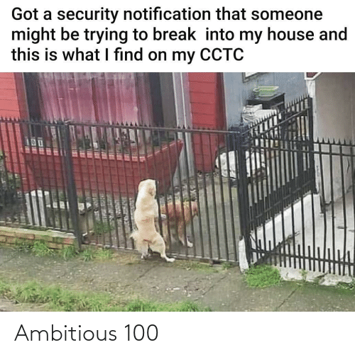 My House: Got a security notification that someone  might be trying to break into my house and  this is what I find on my CCTC  UOUC R ER Ambitious 100