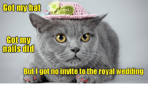 Nails Wedding And Got My Hat Did But I No Invite To The Royal