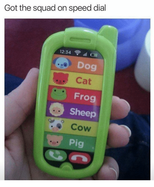 Squad, Got, and Dog: Got the squad on speed dial  12:34 l  Dog  Cat  Frog  Sheep  Cow  9  Pi