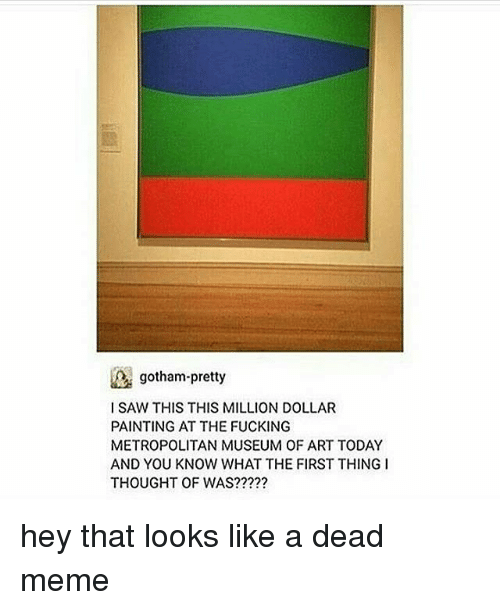 Memes, Gotham, and Paint: gotham-pretty  l SAW THIS THIS MILLION DOLLAR  PAINTING AT THE FUCKING  METROPOLITAN MUSEUM OF ART TODAY  AND YOU KNOW WHAT THE FIRST THING I  THOUGHT OF WAS? hey that looks like a dead meme
