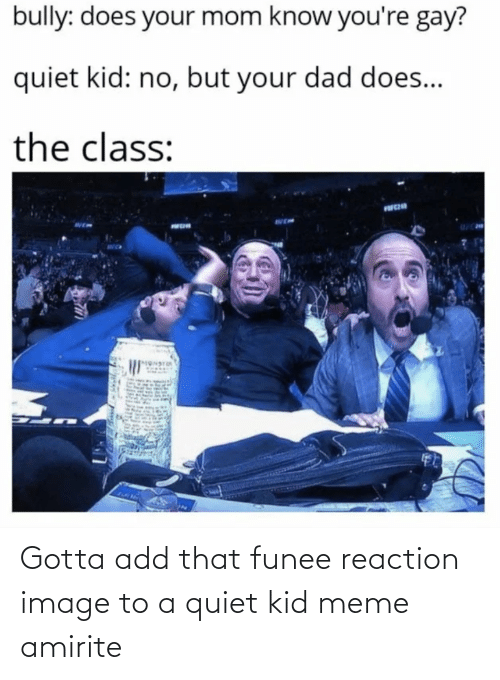 reaction: Gotta add that funee reaction image to a quiet kid meme amirite
