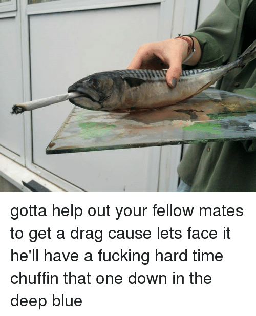 Dank, Blue, and Help: gotta help out your fellow mates to get a drag cause lets face it he'll have a fucking hard time chuffin that one down in the deep blue