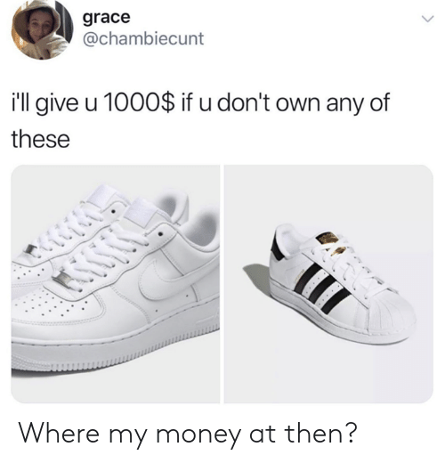 Dank, Money, and 🤖: grace  @chambiecunt  i'l give u 1000$ if u don't own any of  these Where my money at then?