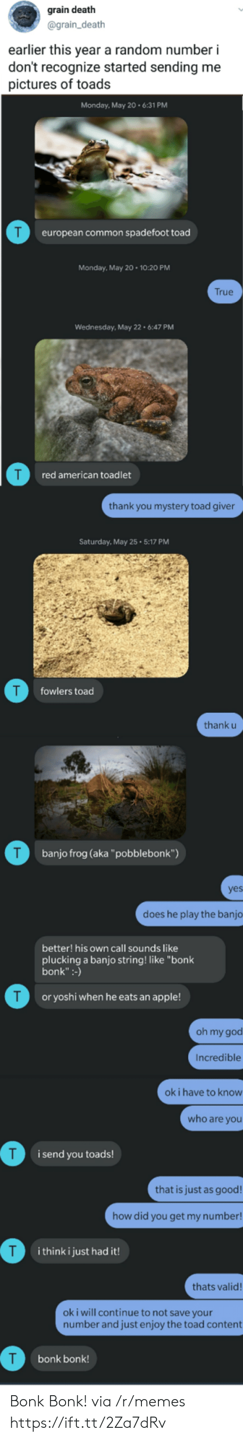 """Thank U: grain death  @grain_death  earlier this year a random number i  don't recognize started sending me  pictures of toads  Monday, May 20.6:31 PM  T  european common spadefoot toad  Monday, May 20 10:20 PM  True  Wednesday, May 22 6:47 PM  red american toadlet  thank you mystery toad giver  Saturday, May 25 5:17 PM  T  fowlers toad  thank u  T  banjo frog (aka""""pobblebonk"""")  yes  does he play the banjo  better! his own call sounds like  plucking a banjo string! like """"bonk  bonk"""":-)  T  or yoshi when he eats an apple!  oh my god  Incredible  ok i have to know  who are you  i send you toads!  that is just as good!  how did you get my number!  T  i think i just had it!  thats valid!  oki will continue to not save your  number and just enjoy the toad content  bonk bonk! Bonk Bonk! via /r/memes https://ift.tt/2Za7dRv"""