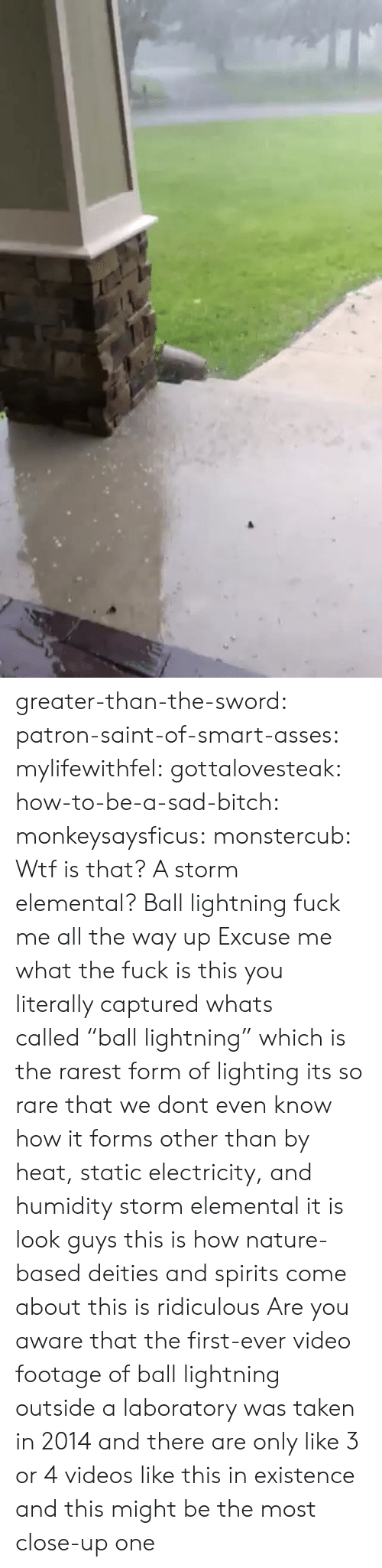 """This Is Ridiculous: greater-than-the-sword:  patron-saint-of-smart-asses:  mylifewithfel:  gottalovesteak:  how-to-be-a-sad-bitch:  monkeysaysficus:   monstercub: Wtf is that? A storm elemental?  Ball lightning fuck me all the way up   Excuse me what the fuck is this  you literally captured whats called""""ball lightning"""" which is the rarest form of lighting its so rare that we dont even know how it forms other than by heat, static electricity, and humidity  storm elemental it is  look guys this is how nature-based deities and spirits come about this is ridiculous  Are you aware that the first-ever video footage of ball lightning outside a laboratory was taken in 2014 and there are only like 3 or 4 videos like this in existence and this might be the most close-up one"""