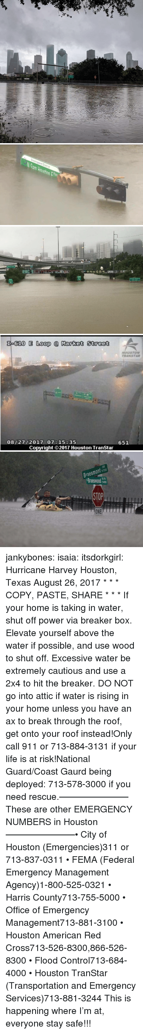 Hurricane Harvey: Greenspoint District   Theater District   620 E Loop Market Street  HOUSTON  TRANSTAR  08/27/2017 07:15:35  651  Copyright ⓒ 2017 Houston TranStar   Braesmont 9700  Braeswod  STOP  ONE jankybones: isaia:  itsdorkgirl:  Hurricane Harvey Houston, Texas  August 26, 2017  * * * COPY, PASTE, SHARE * * * If your home is taking in water, shut off power via breaker box. Elevate yourself above the water if possible, and use wood to shut off. Excessive water be extremely cautious and use a 2x4 to hit the breaker. DO NOT go into attic if water is rising in your home unless you have an ax to break through the roof, get onto your roof instead!Only call 911 or 713-884-3131 if your life is at risk!National Guard/Coast Gaurd being deployed: 713-578-3000 if you need rescue.———————–These are other EMERGENCY NUMBERS in Houston———————–• City of Houston (Emergencies)311 or 713-837-0311 • FEMA (Federal Emergency Management Agency)1-800-525-0321 • Harris County713-755-5000 • Office of Emergency Management713-881-3100 • Houston American Red Cross713-526-8300,866-526-8300 • Flood Control713-684-4000 • Houston TranStar (Transportation and Emergency Services)713-881-3244   This is happening where I'm at, everyone stay safe!!!