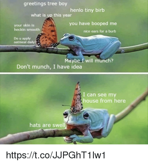 Memes, My House, and Smooth: greetings tree boy  henlo tiny birb  what is up this year  you have booped me  your skin is  heckin smooth  nice ears for a burb  Do u apply  oatmeal daily?  Maybe I will munch?  Don't munch, I have idea  I can see my  house from here  hats are swell https://t.co/JJPGhT1lw1