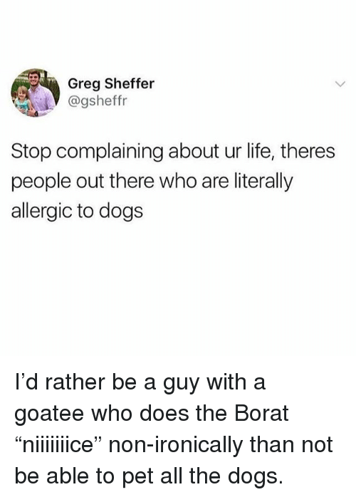 "Borat: Greg Sheffer  @gsheffr  Stop complaining about ur life, theres  people out there who are literally  allergic to dogs I'd rather be a guy with a goatee who does the Borat ""niiiiiiice"" non-ironically than not be able to pet all the dogs."