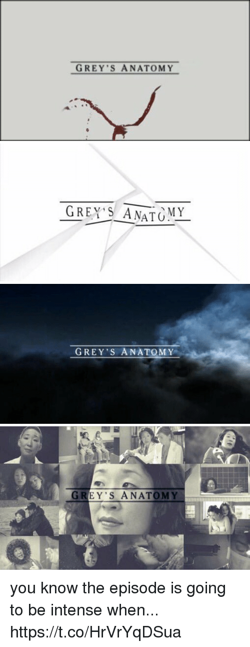 Memes, Grey's Anatomy, and Grey: GREY S ANATOMY   GREY'S ANATOMY   GREY'S ANATOMY   GREY'S ANATOMY you know the episode is going to be intense when... https://t.co/HrVrYqDSua