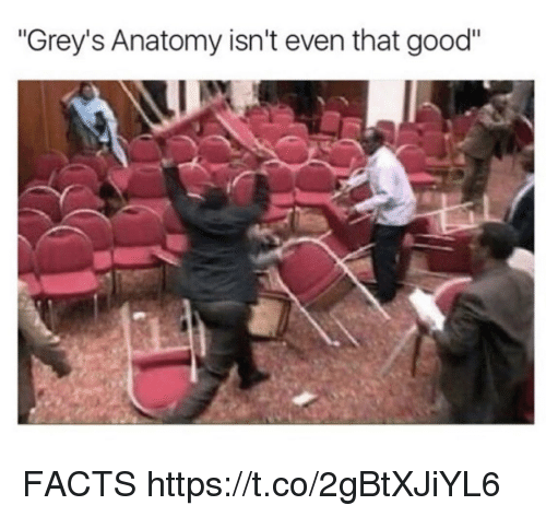 """Facts, Memes, and Grey's Anatomy: """"Grey's Anatomy isn't even that good"""" FACTS https://t.co/2gBtXJiYL6"""