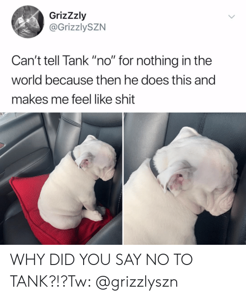 "Shit, World, and Tank: GrizZzly  @GrizzlySZN  Can't tell Tank ""no"" for nothing in the  world because then he does this and  makes me feel like shit WHY DID YOU SAY NO TO TANK?!?Tw: @grizzlyszn"