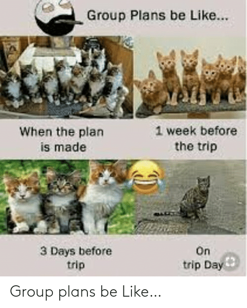 Plans: Group plans be Like…