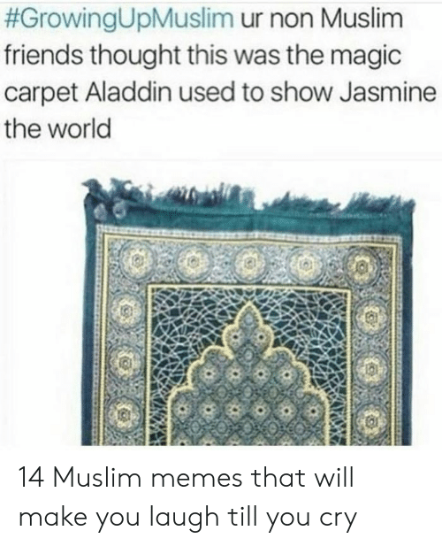 Laugh Till:  #GrowingUpMuslim ur non Muslim  friends thought this was the magic  carpet Aladdin used to show Jasmine  the world 14 Muslim memes that will make you laugh till you cry