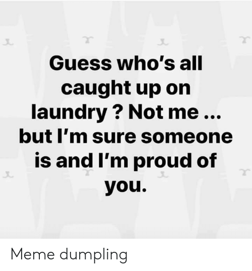 Laundry: Guess who's all  caught up on  laundry ? Not me...  but I'm sure someone  is and I'm proud of  you. Meme dumpling