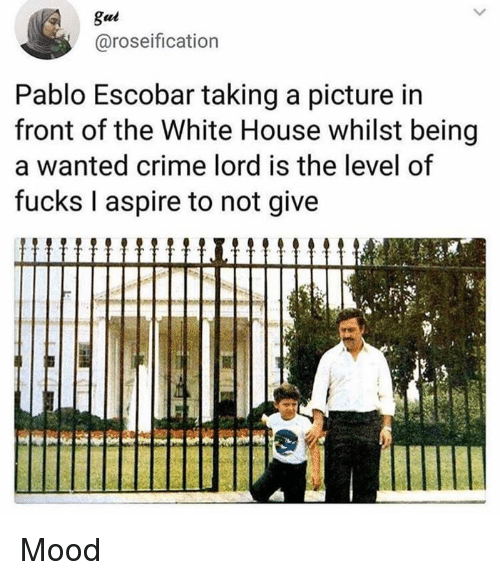 Pablo Escobar: gui  @roseification  Pablo Escobar taking a picture in  front of the White House whilst being  a wanted crime lord is the level of  fucks I aspire to not give Mood