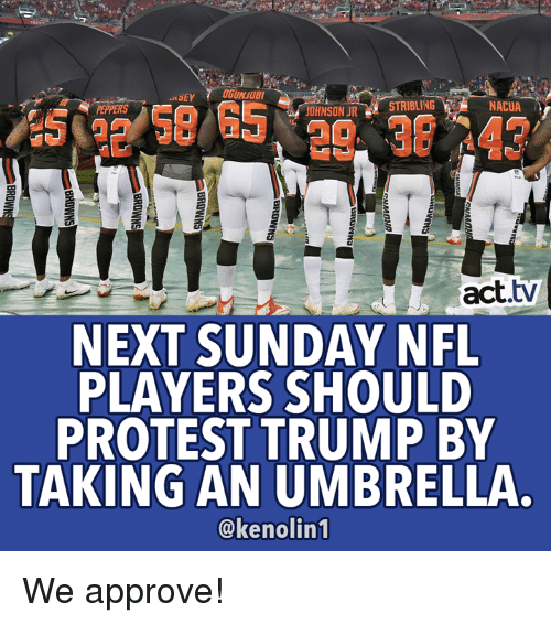 Memes, Nfl, and Protest: GUNSOB  NACUA  PEPPERS  OHNSON URSTRIBLING  act.tv  NEXT SUNDAY NFL  PLAYERS SHOULD  PROTEST TRUMP BY  TAKING AN UMBRELLA.  @kenolin1 We approve!