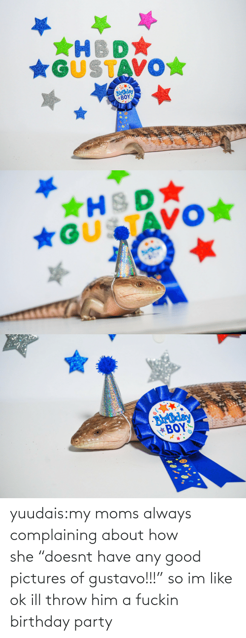 "fuckin: *GUSTAVO☆  Blrthday  ΒΟΥΣ   ★HSD  *GUSTAVO★   Barthday  BOY  Gunique yuudais:my moms always complaining about how she ""doesnt have any good pictures of gustavo!!!"" so im like ok ill throw him a fuckin birthday party"
