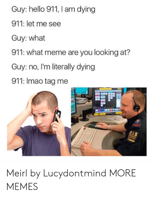 What Meme: Guy: hello 911, I am dying  911: let me see  Guy: what  911: what meme are you looking at?  Guy: no, I'm literally dying  911: Imao tag me Meirl by Lucydontmind MORE MEMES