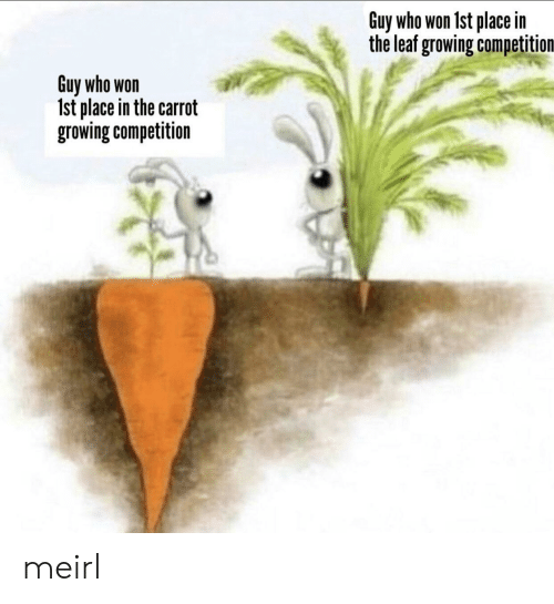 Who Won: Guy who won 1st place in  the leaf growing competition  Guy who won  Ist place in the carrot  growing competition meirl