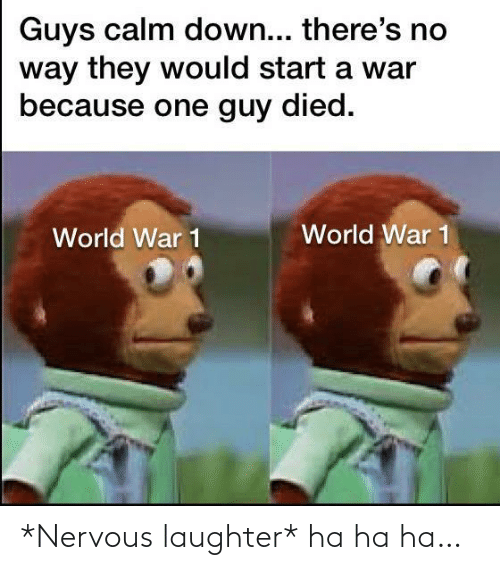 Laughter: Guys calm down... there's no  way they would start a war  because one guy died.  World War 1  World War 1 *Nervous laughter* ha ha ha…