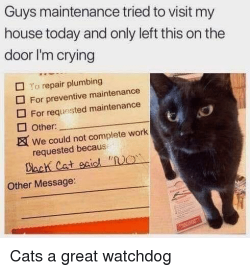 Cats, Crying, and My House: Guys maintenance tried to visit my  house today and only left this on the  door I'm crying  □ To repair plumbing  For preventive maintenance  For requested maintenance  Other:  We could not complete work  requested becaus  Dack Cat eiol NO  Other Message Cats a great watchdog