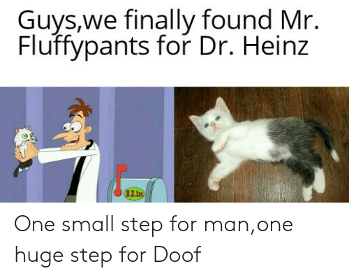 Finally Found: Guys,we finally found Mr.  Fluffypants for Dr. Heinz  DE.In One small step for man,one huge step for Doof