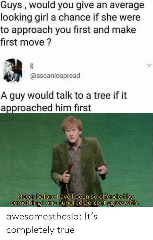 Percent: Guys , would you give an average  looking girl a chance if she were  to approach you first and make  first move ?  @ascaniospread  A guy would talk to a tree if it  approached him first  Never before have I been so offended by  something I one hundred percent agree with. awesomesthesia:  It's completely true