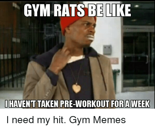 gym memes: GYM RATS ELI  I HAVENT TAKEN PRE-WORKOUT FOR AWEEK I need my hit.