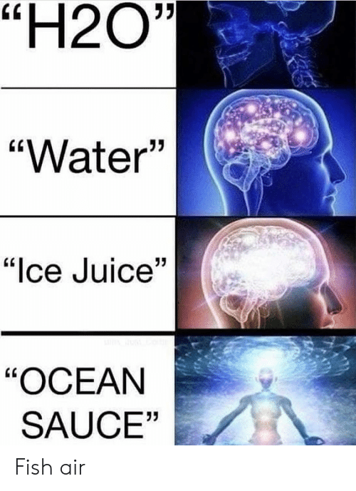"Juice, Memes, and Fish: ""H2O""  ""Water'""  02  ""lce Juice""  ""OCEAN  SAUCE""  03 Fish air"